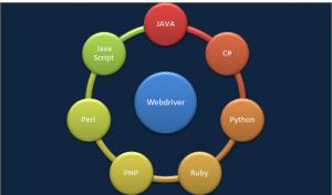 Selenium WebDriver Testing: multi-lang