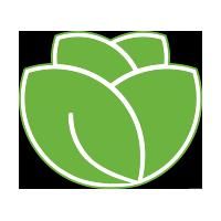 Lettuce - Python Testing Framework